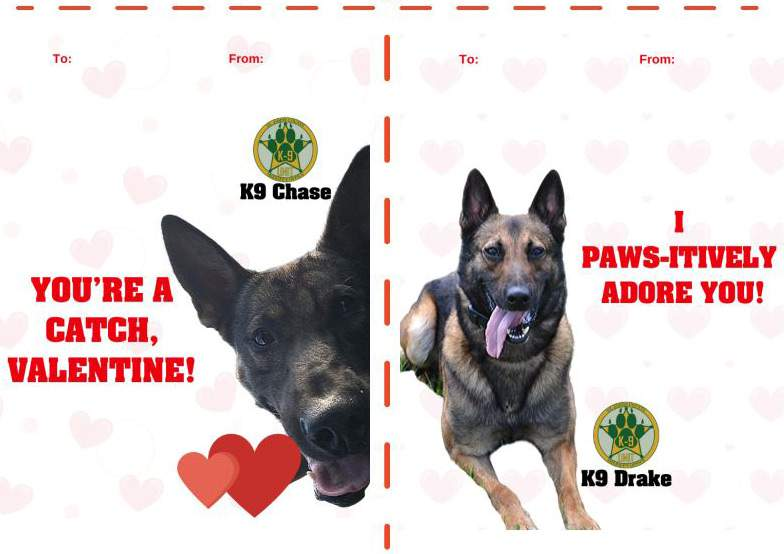 These are two of the nine Valetine's Day cards featuring St. Johns County Sheriff's Office K-9s.