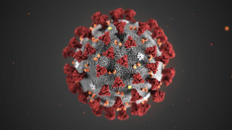 This illustration provided by the Centers for Disease Control and Prevention shows COVID-19, or the coronavirus. (CDC via AP)