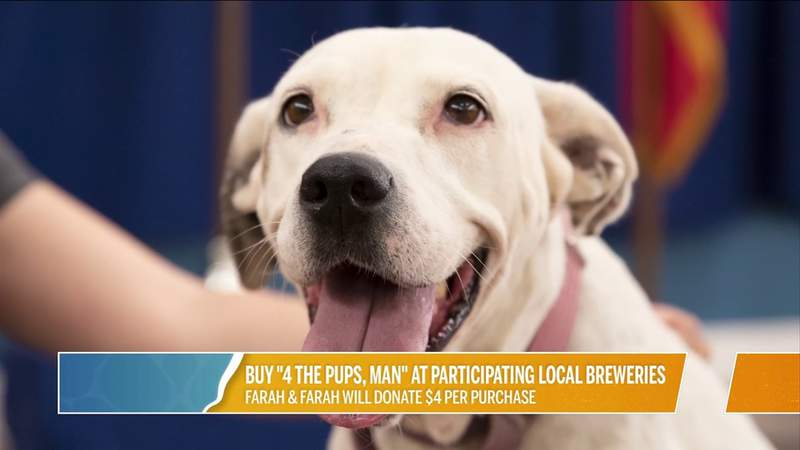 Buy 4 The Pups! At Participating Local Breweries   River City Live