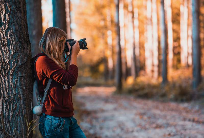 With 13 different courses, learn the ins and outs of photography with this bundle.