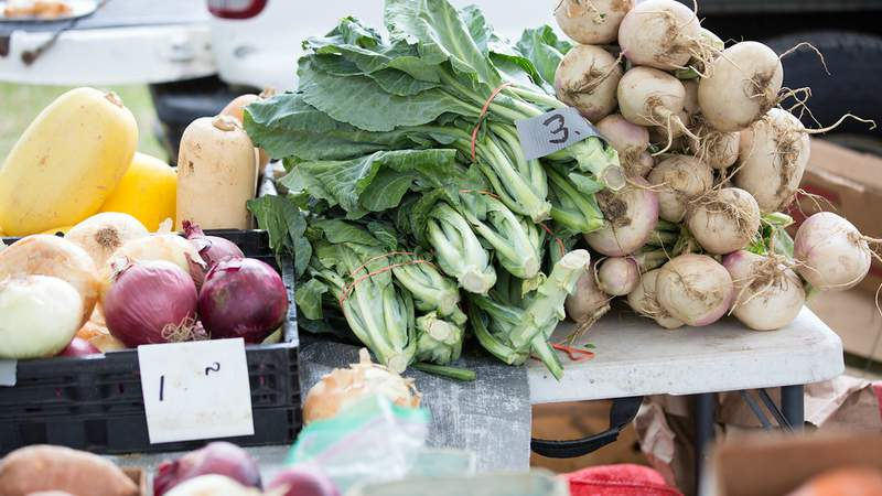 Fresh produce on display at the Orange Park Farmers' and Arts Market.