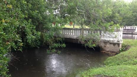 File photo of McCoys Creek