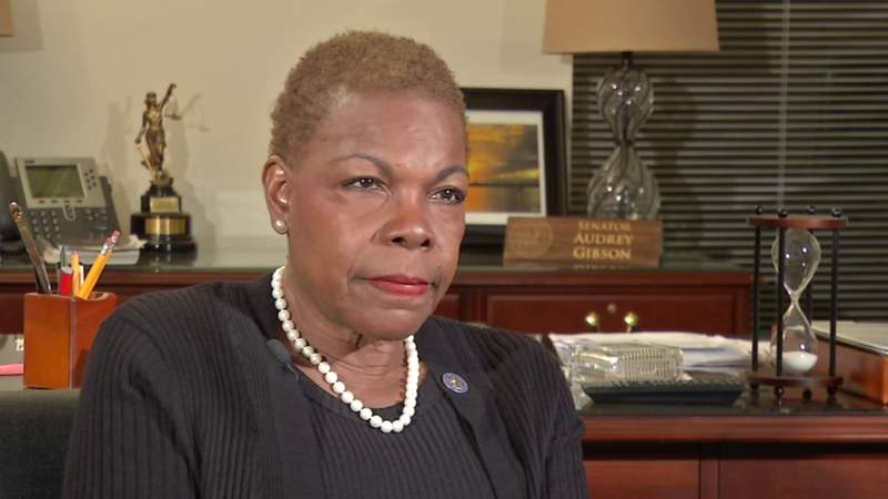 Joy Purdy's interview with state Sen. Audrey Gibson