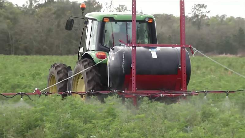 Couple Chasing American Dream as Farmers