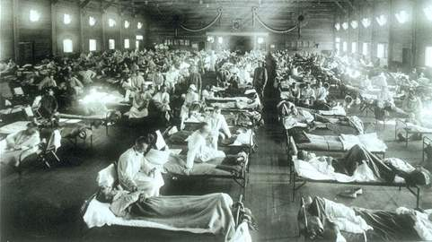 Unlike earlier pandemics and seasonal fluoutbreaks, the 1918 pandemic flu saw high mortality rates among healthy adults. In fact, the illness and mortality rates