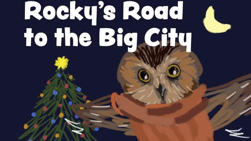 """The cover of """"Rocky's Road to the Big City."""""""