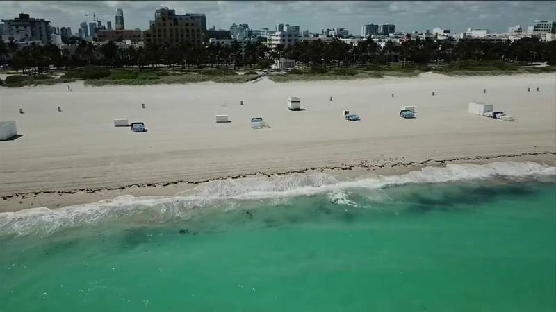 Governor's task force looks at reopening Florida's restaurants, hotels