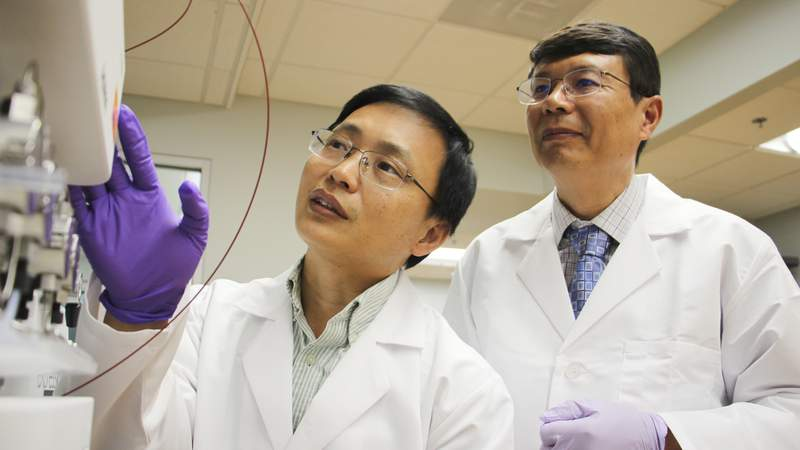 Guangrong Zheng, Ph.D., left, an associate professor of medicinal chemistry, and Daohong Zhou, M.D., right, a professor of pharmacodynamics and the Henry E. Innes Professorship of Cancer Research at the UF Health Cancer Center, bring their complementary expertise together under the same roof at the University of Florida College of Pharmacy.