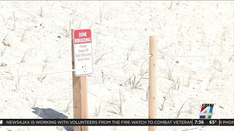 Dune Restoration Project Finished In Time For Hurricane Season