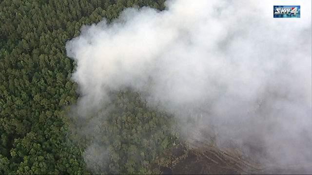 Yellow Bluff wildfire