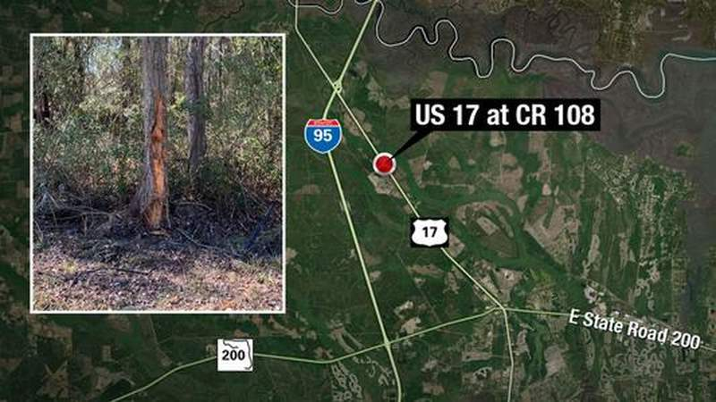 2 killed when SUV swerves to avoid deer, crashes