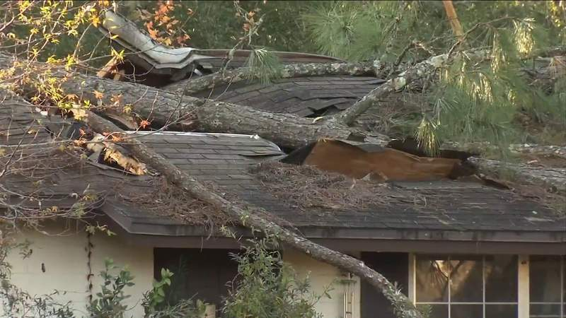 Widespread damage left in wake of Christmas Eve storms