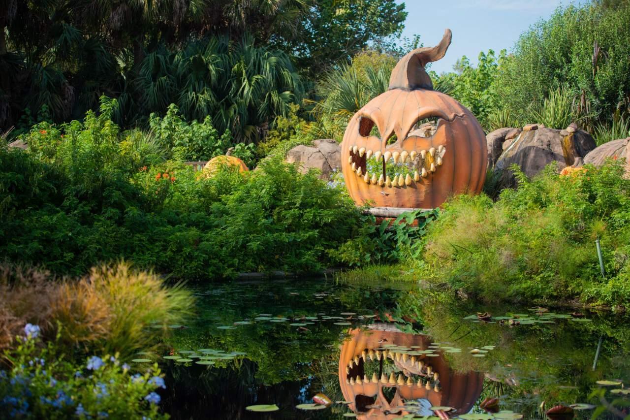 Jacksonville Zoo Prices Halloween 2020 Jacksonville Zoo announces 2020 Spooktacular dates