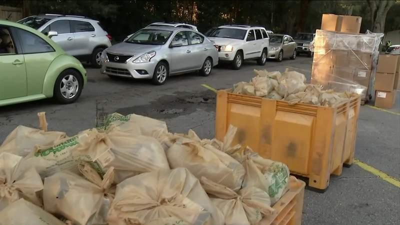 Hundreds line up for food giveaway