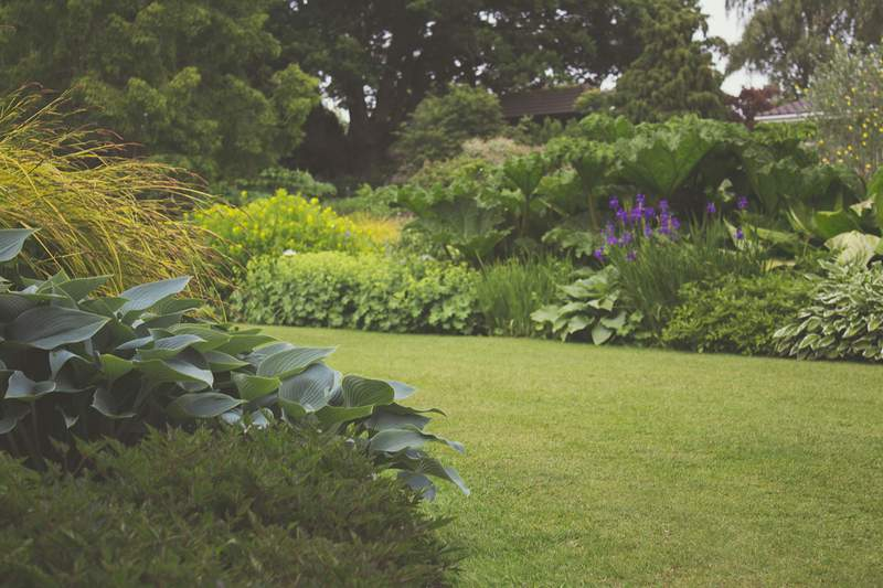 Do you have a pretty green space you can show us?