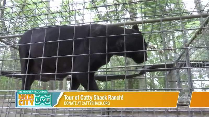 A Tour of Catty Shack Ranch Wildlife Sanctuary! | River City Live