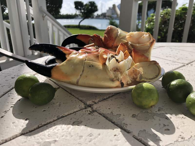 Stone crab season opens Oct 15th, and we can't wait...