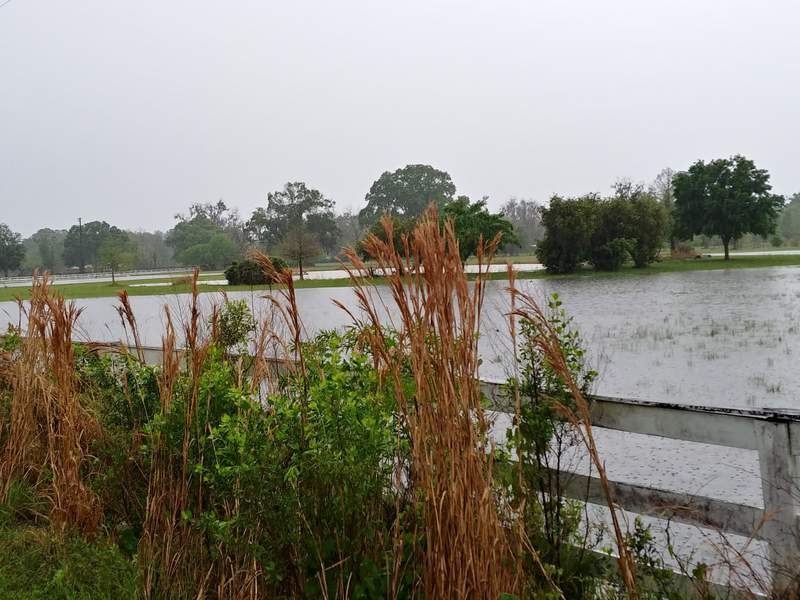 What is just a small podn looks like a big lake after all the rain in Starke Tuesday morning.