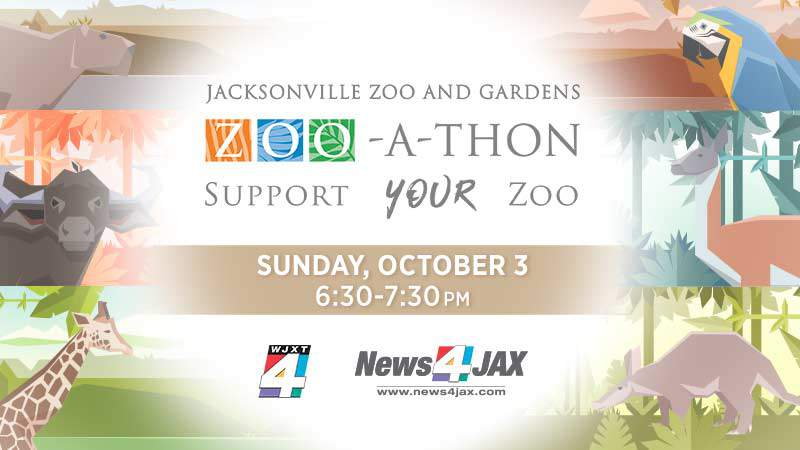 Help the Jacksonville Zoo and Gardens with fundraising efforts.