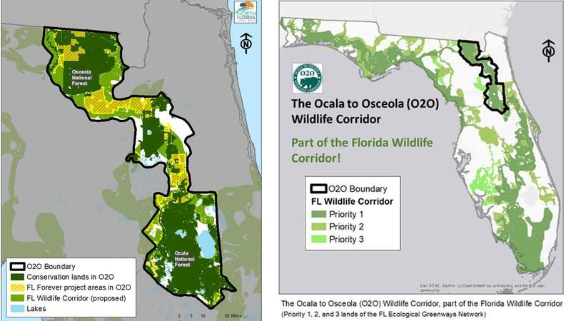 Map of the Ocala to Osceola Wildlife Corridor