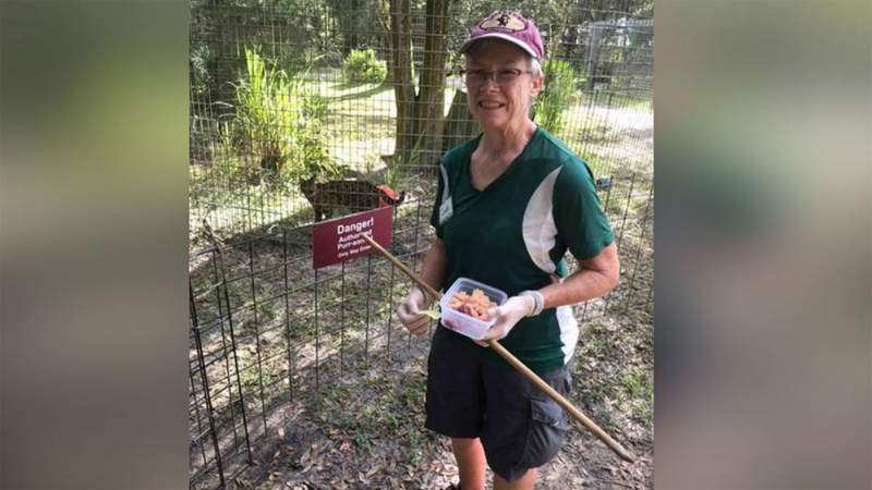 Candy Couser, who has been a volunteer at Big Cat Rescue for five years and a Green Level Keeper (lions, tigers, etc.) for almost three years.