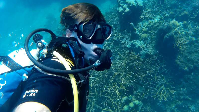 Meteorologist Mark Collins dives a healthy reef south of Cuba that is faring much better than many parts of the great barrier reef in Australia.