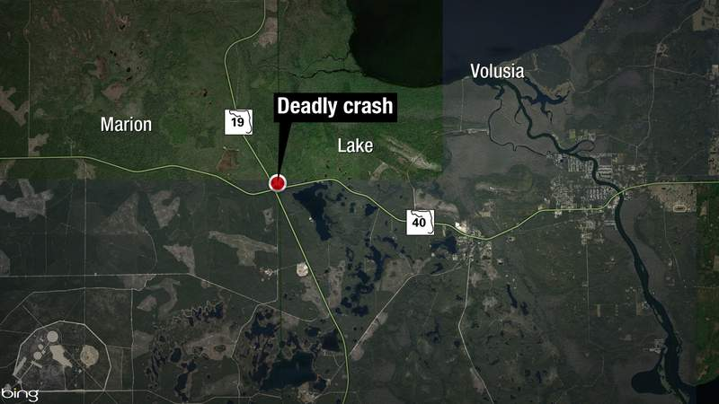 FHP reported a motorcyclist hit a bear near the Ocala National Forest. Both the rider and bear died.