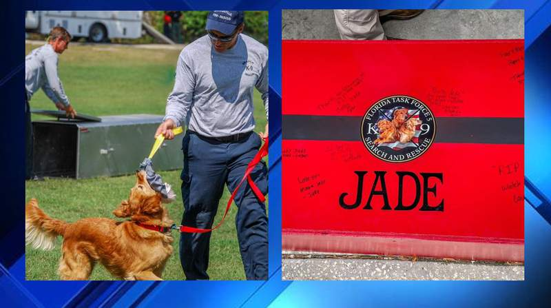 1st certified JFRD search dog passes away