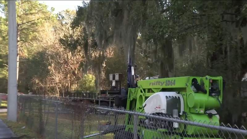 Positively Jax: Tree trimmers team up to help Jacksonville veteran