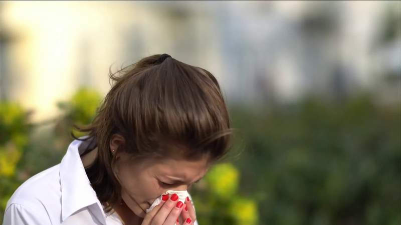 Allergy season, will it arrive later this year?