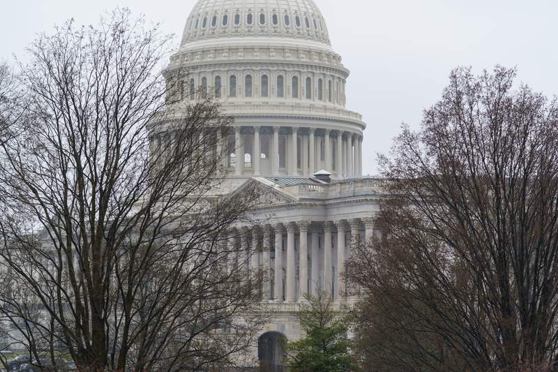 The Capitol is seen under muted and rainy skies in Washington, Wednesday, March 24, 2021. (AP Photo/J. Scott Applewhite)